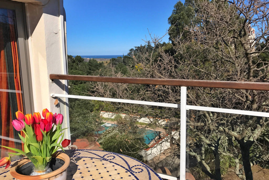 Le Panorama vue terrasse